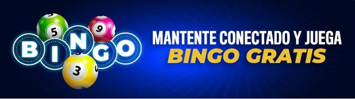 bingo casino rushbet